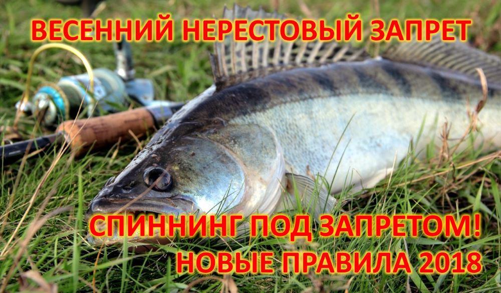 охота рыбалка советы бывалых